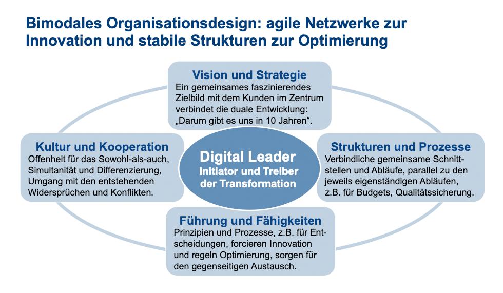Bimodales Organisationsdesign. Agile Netzwerke